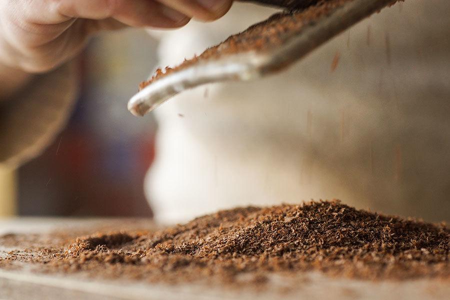 Cacao Brut Rape