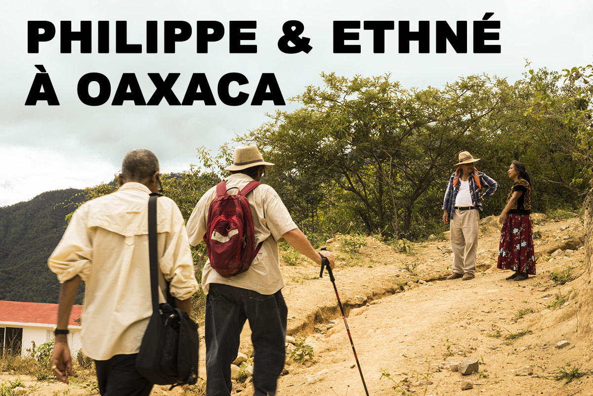La chasse au piment Pasilla de Oaxaca