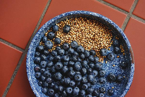 Blueberry Coriander