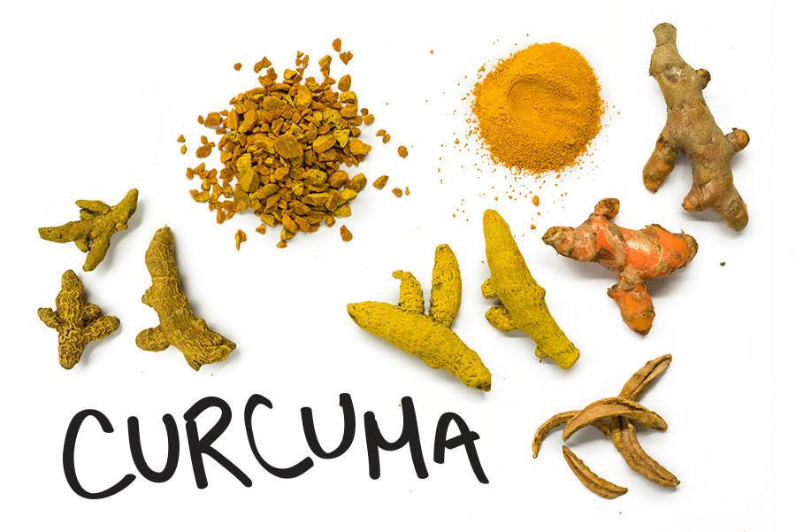 Curcuma - À la découverte des rhizomes