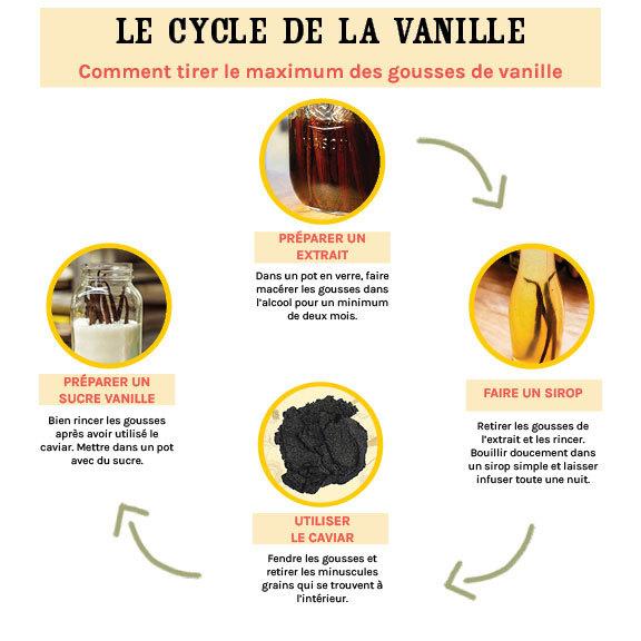 Cycle De La Vanille