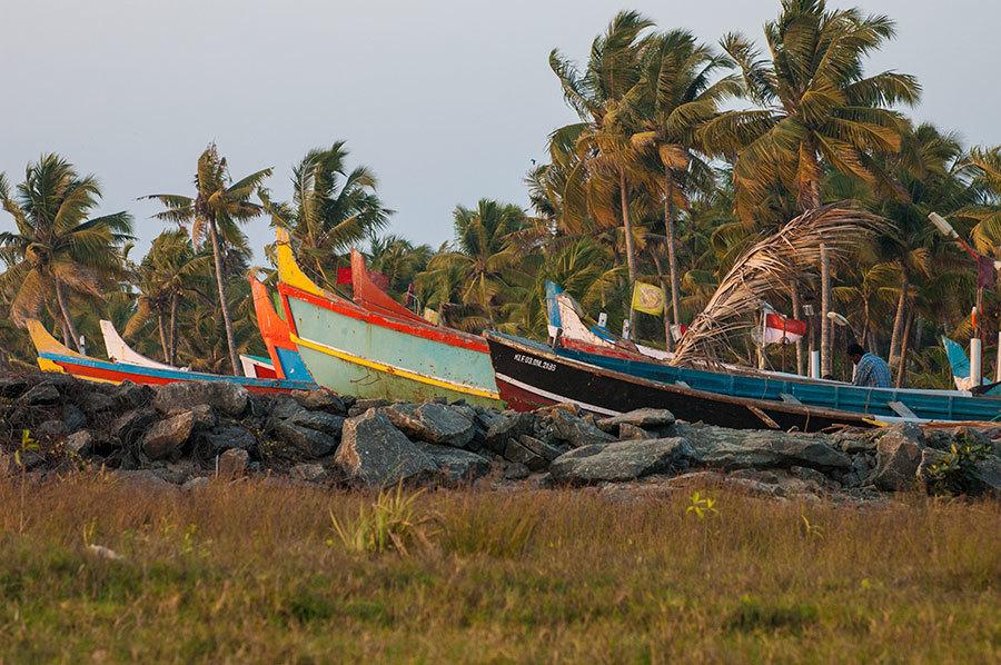Saveurs et goûts: l'Inde du sud