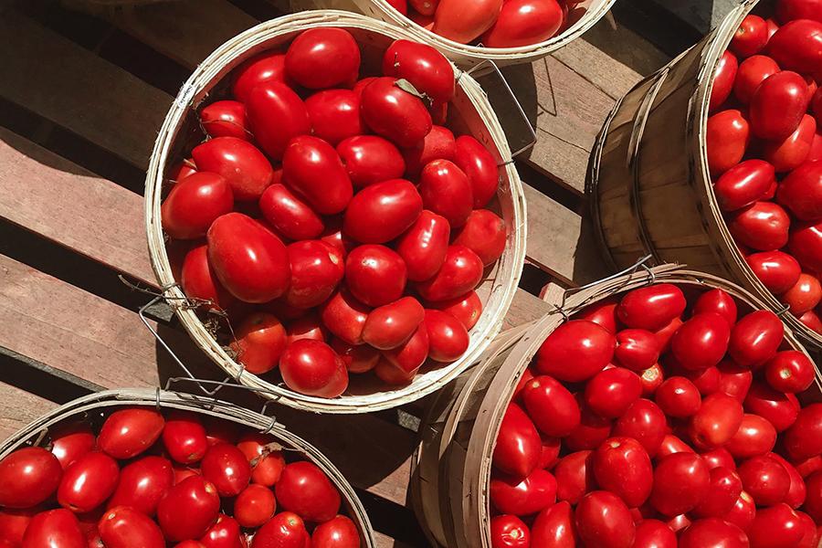 Recettes Tomates