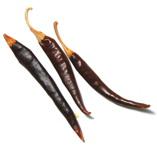chile-puya
