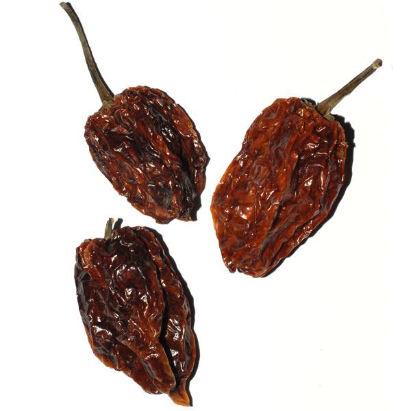 habanero-chile
