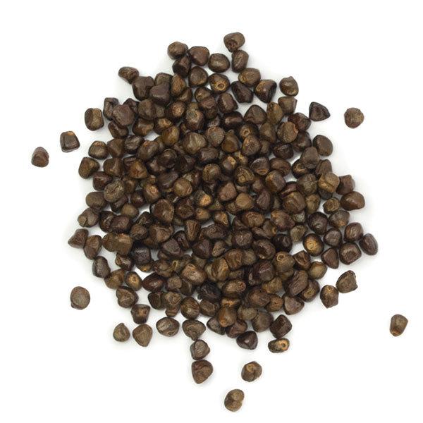 korarima-seeds
